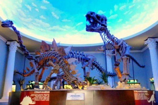 wahana-patung-kerangka-tyranosaurus-di-museum-satwa-jatim-park-2