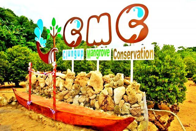 Mangrove Pantai Clungup